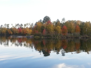 Dock View Fall